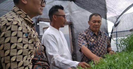 Oded M Danial Kunjungi Komunitas Bandung Hydromarket: Swasembada Sayur & Tekan Stunting